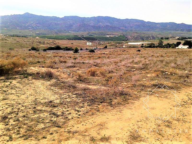 Terreno A-7 s/n, Los Gallardos