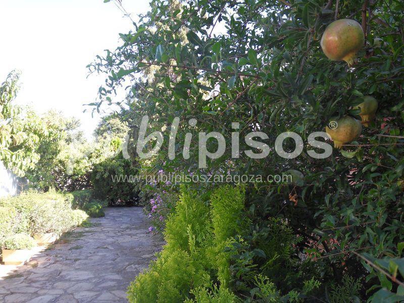 Chalet Santa Isabel con Piscina-19