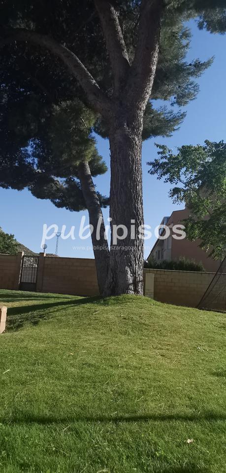 Venta de chalet con piscina y jardín Cuarte Cadrete-4