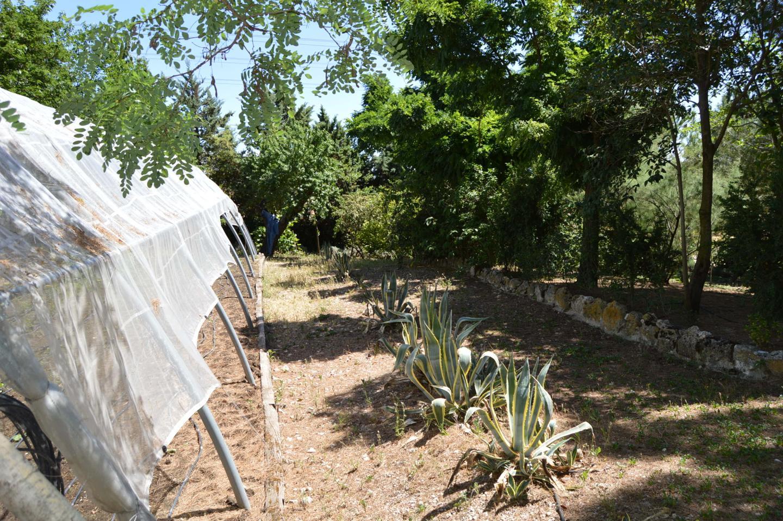 Terreno en venta con 80000 m2,  en Tarancón