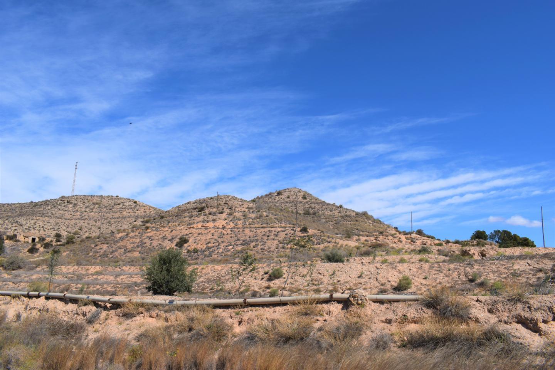 Terreno AL-821, Antas